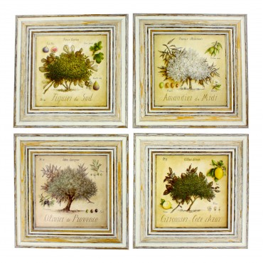"French  Vintage Framed postcards from painting  ""Provence Trees "" - set of 4 -"
