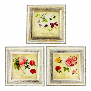 "French  Vintage Framed postcards from painting  ""Fleurs"" - set of 3 -"