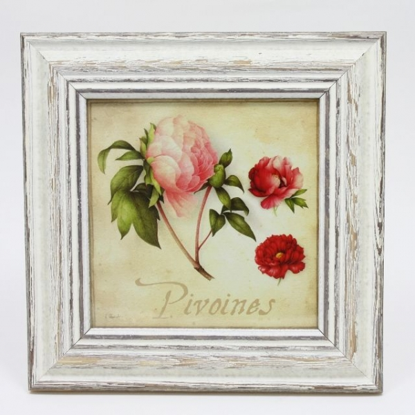 French Square Frame PIVOINE - My French Neighbor