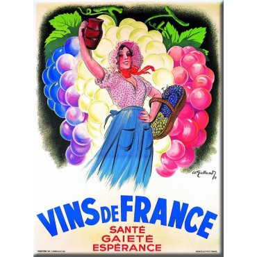 "French Metal Sign Vins De France 5.9""x8.3"""
