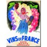 "French Metal Card 5.9"" x 8.3""  LES VINS DE FRANCE"